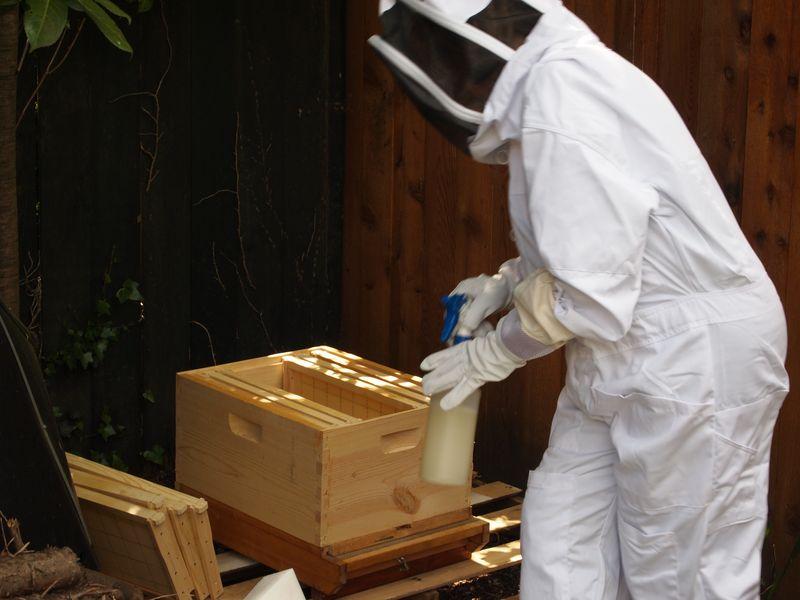 Kathy - Beekeeper